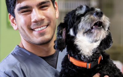 National Veterinary Technician Week: Celebrating the 'Heart and Soul' of Our Veterinary Communities